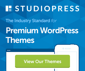 SEO Ready WordPress Theme
