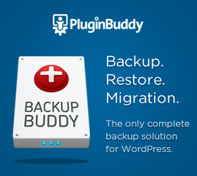 BackUp Your WordPress Site Now